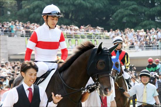 JRA「超豪華天皇賞・秋」にダノンプレミアム勝機あり? 立ち塞がる「歴戦の古馬勢」