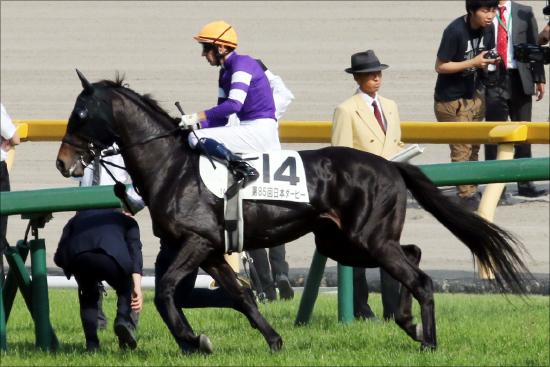 JRA「ダービー驚愕4着馬」エタリオウが2強を脅かす!? ステイゴールド「最後の大物」へ好走必至か