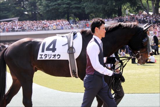 JRA「ダービー大激走」アノ馬にデムーロ白羽の矢......菊花賞に向け、豪華トライアルに挑む