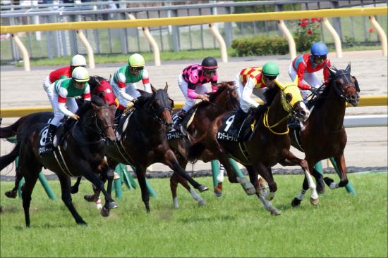 JRA「超話題」の2歳馬サートゥルナーリア出陣! 圧倒的評判を誇る日米オークス馬シーザリオ「最高傑作」が早くもデビュー!
