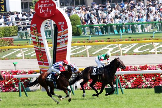 安田記念(G1)JRA美浦関係者「イチオシ」有力馬2頭は!? 「ついに完成」「マイルも平気」?