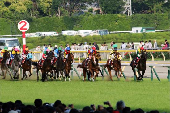 JRA「日本ダービー故障馬」続出の怪......キンカメ「死のダービー」で想起する「高速馬場の代償」説