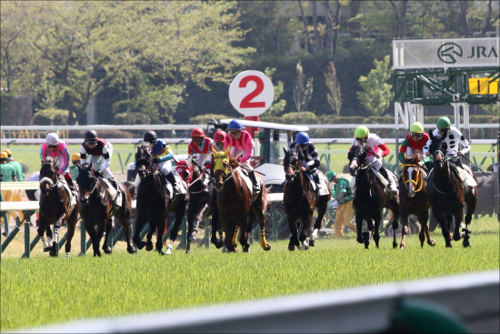 JRA「幻のダービー馬」フィエールマン重賞制覇に出陣......期待度最高の良血馬が能力を見せつける?の画像1