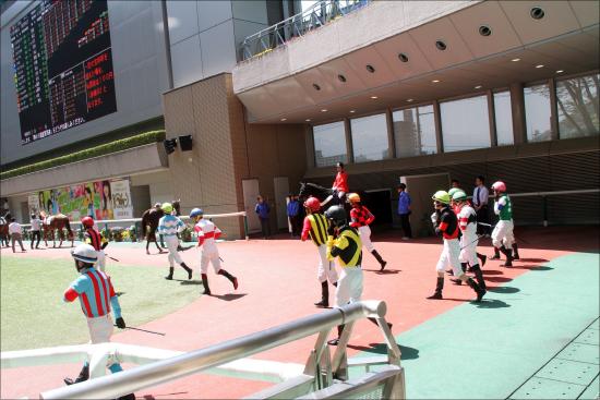JRA美浦の「悲鳴」騎手不足&「関西馬遠征しまくり」で崩壊の危機