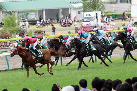 JRA新種牡馬「ジャスタウェイ産」成功確実!? アウィルアウェイが圧倒的強さで2連勝の画像1