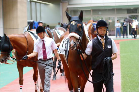 JRA小倉2歳S「関係者イチオシ」情報で勝利? 狙いは日本に慣れたあの騎手?