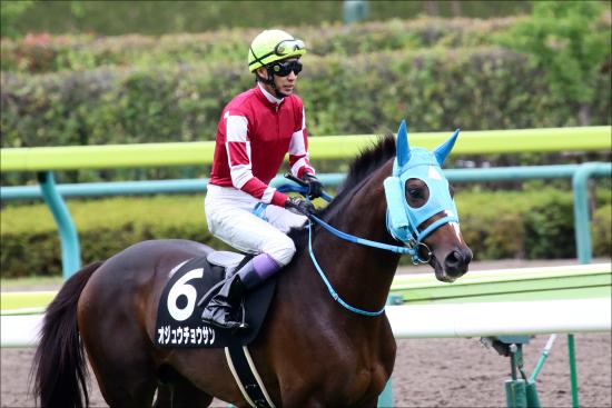 武豊オジュウチョウサン「次走」決定! 夢の有馬記念へ選んだレースは「少頭数濃厚」?