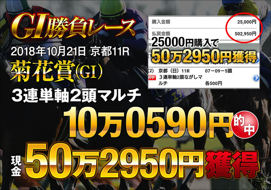 ジャパンカップ1点的中!競馬界の頂点に立つ馬主はやっぱり凄かった!阪神JFもあの奇跡が再び...の画像2