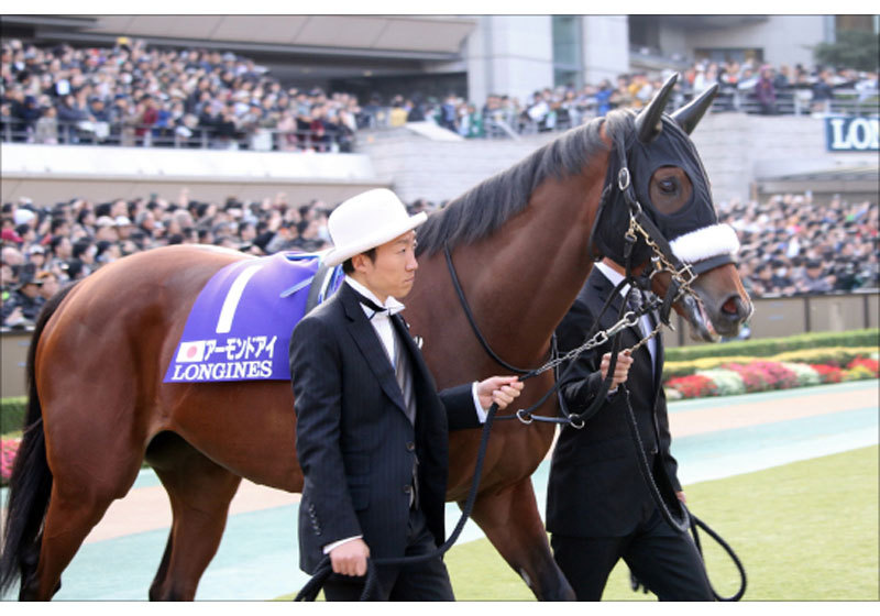 JRAサートゥルナーリア凱旋門賞(G1)挑戦でアーモンドアイ「回避」も!? 有力馬