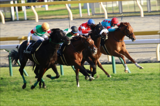 JRA日本ダービー(G1) 「令和初重賞馬」レッドジェニアルが酒井学で嵐を呼ぶの画像1
