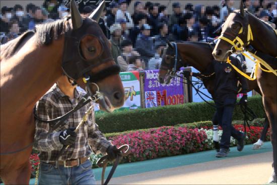 JRA阪神JF(G1)「廃止」提言!? 亀谷敬正氏「つまらないレース」有名評論家が語る驚愕の2歳女王戦「代替案」とは