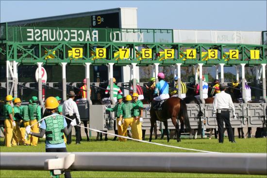 JRA栗東「記者情報」エリザベス女王杯の狙い目は? 「新たな一面」見せる馬は?の画像1