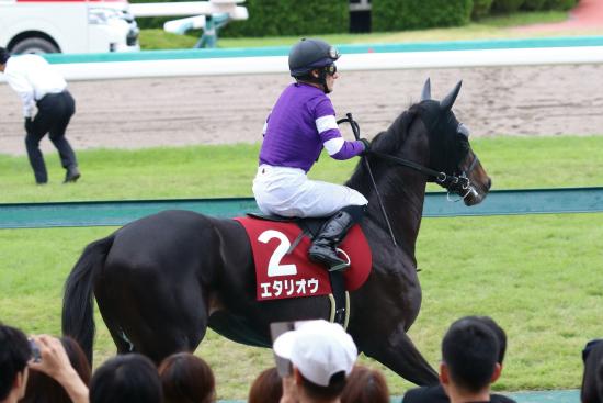 JRAデムーロあわや「騎乗停止延長」も原因はアノ馬!? 神戸新聞杯