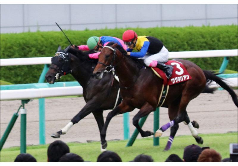 JRA大阪杯(G1)栗東・美浦から「耳寄り情報」ゲット! あの「G1ホース」たちの本当の状態は......