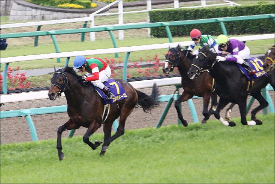 日本ダービー(G1)「出走馬」史上最高レベルに驚愕!? 絶対王者ダノンプレミアム、新勢力ブラストワンピース、ギベオンの「動向」は......の画像1