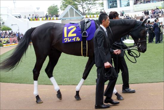 日本ダービー(G1)「1週前追い切り」で際立つ馬は!? 関係者情報含む「光る馬4頭」をピックアップの画像2