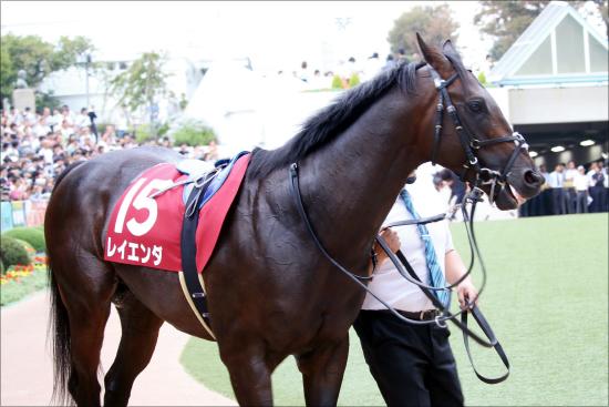 JRA東京新聞杯(G3)レイエンダ「マイル挑戦」は迷走にあらず!? 伸び悩むレイデオロ弟に競馬界の「影の支配者」から鶴の一声