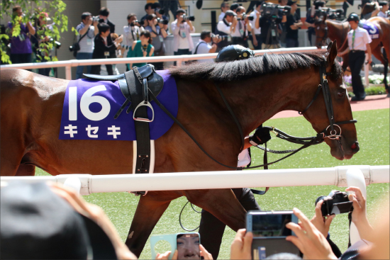 JRA毎日王冠(G1)「なぜ京都大賞典じゃない?」キセキは奇跡を起こせるか