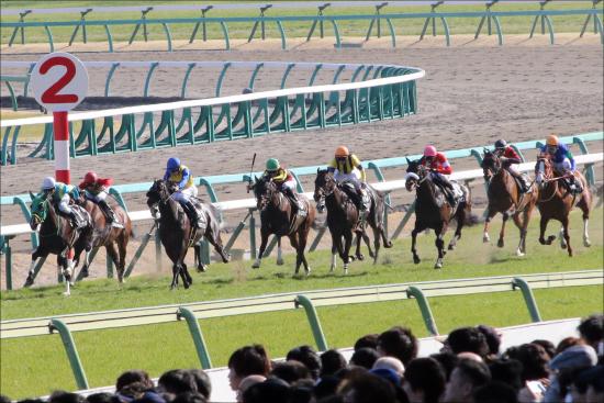 中山牝馬S(G3)は関係者「極秘ネタ」で「4頭」勝負! 「波乱必至」牝馬限定重賞「イチオシ馬」とは