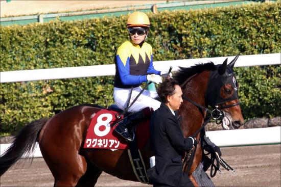 日本ダービー(G1)ワグネリアン皐月賞は「度外視」できる!? 「馬場」だけでない明確敗因と勝算の画像1