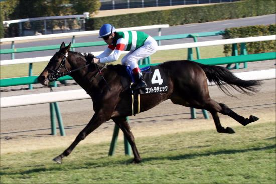 JRA「関東の女帝候補」コントラチェックの次走決定。牝馬クラシックに名乗りあげる?の画像1
