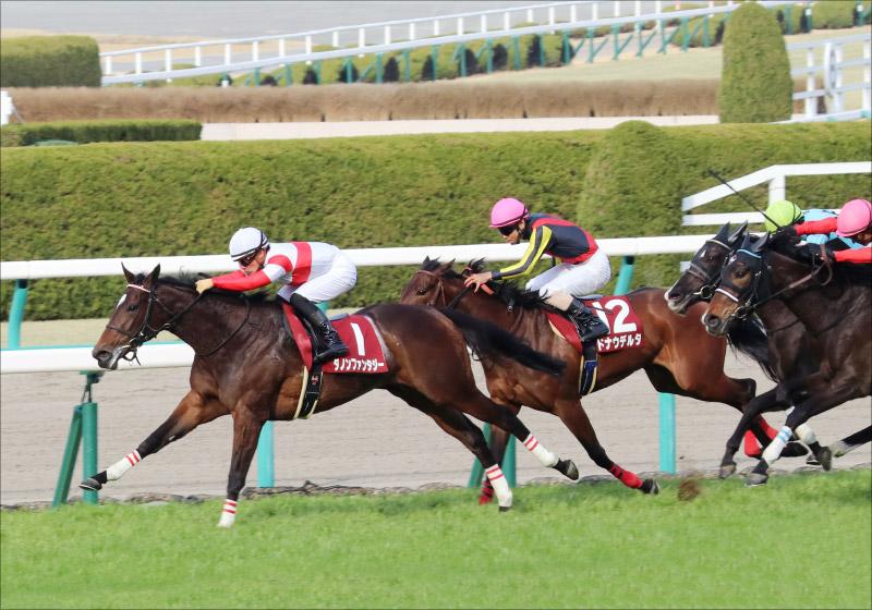 JRA「G1ダノン4連勝」可能性!? 「ダノックス」の正体と有力馬それぞれの「低くない障壁」