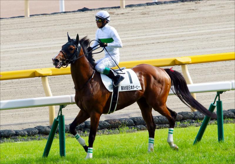 JRA「東京G1レコード三昧」異様な高速馬場が波乱と議論を呼んだ
