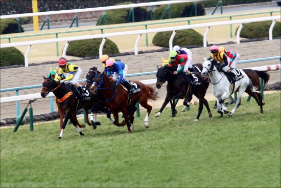 【京都牝馬S(G3)展望】春の女王の座をめぐる熾烈な争い!?大舞台へ向けての大事な試金石を制するのは?