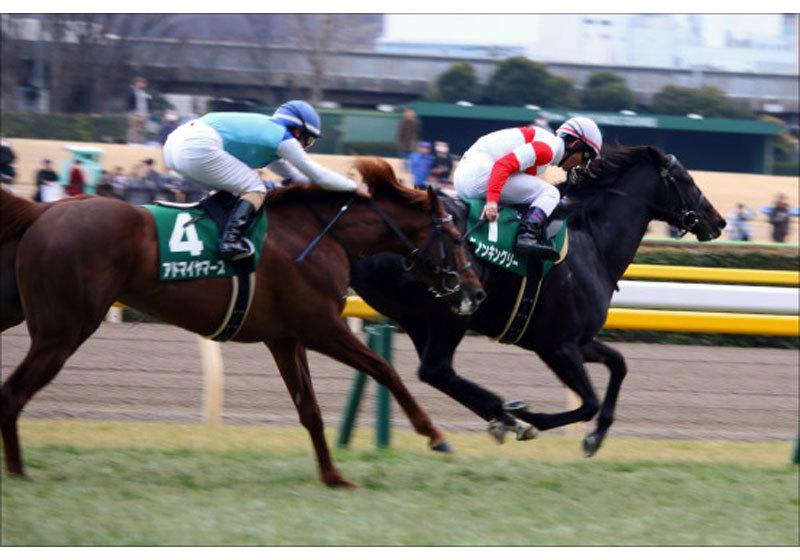 JRA皐月賞(G1)戸崎圭太「成長力」に不満!?「上積みない」ダノンキングリーに「大種牡馬ディープインパクト」のジンクス