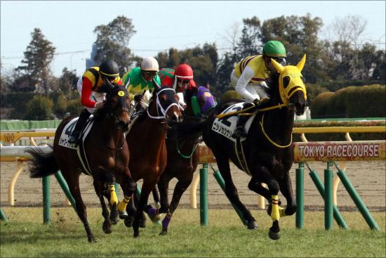 【青葉賞(G2)展望】JRA「日本ダービー重要前哨戦」に素質馬集結! 令和最初の大舞台「切符」を手にするのはの画像1