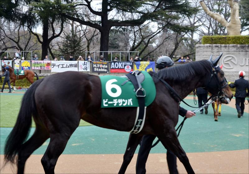JRA桜花賞(G1)「福永祐一の作戦は」ビーチサンバを「善戦マン」と侮るなかれ、な理由