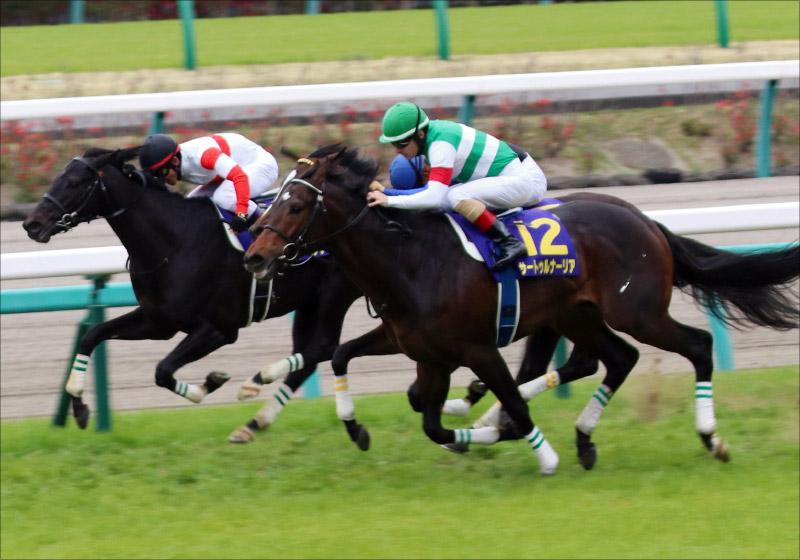 JRA日本ダービー(G1)サートゥルナーリア超える鉄馬! 現場ネタから「超伏兵」も発見!!の画像2