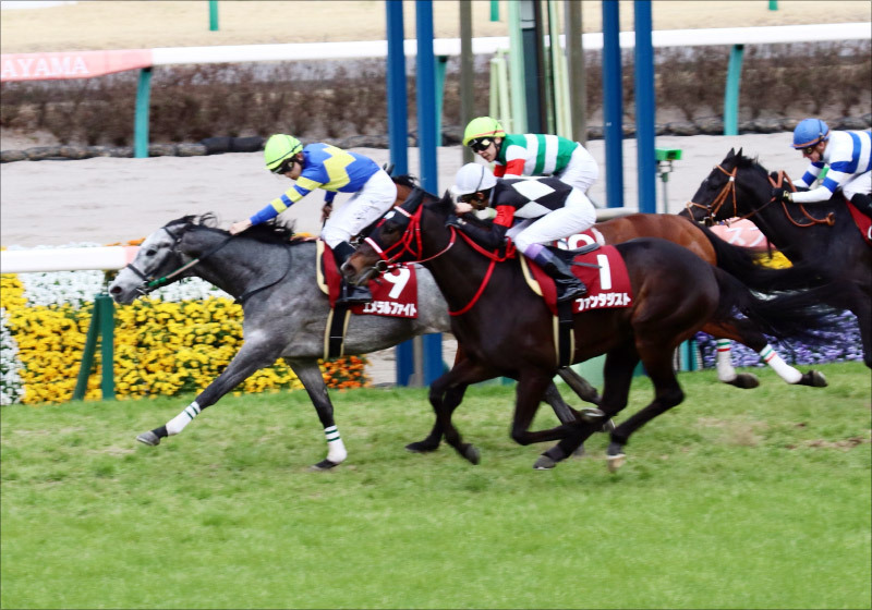 JRA「中山専門厩舎?」エメラルファイトを石川裕紀人が導いた! スプリングS上位馬の「皐月圧巻実績」