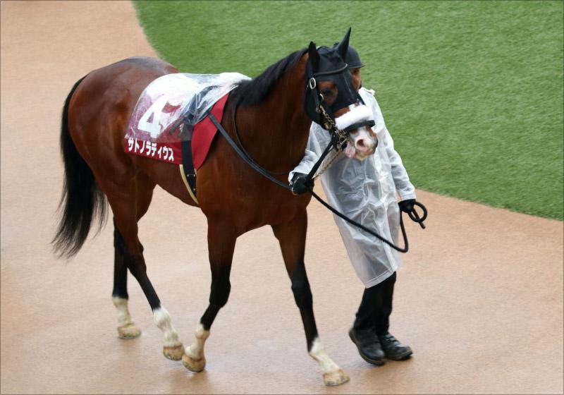 【青葉賞(G2)展望】JRA「日本ダービー重要前哨戦」に素質馬集結! 令和最初の大舞台「切符」を手にするのはの画像2