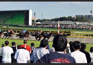 天皇賞の軍資金稼ぎにオススメ!福島牝馬S・マイラーズC・フローラSの編集部厳選穴馬情報を公開!