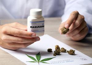 医療大麻を認めると乱用者も増加...