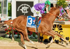 世界最強・カリフォルニアクロームが米年度代表馬選出。ラストランはド派手で「問題多め」のあのビッグレースか
