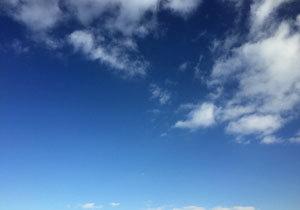 「卑屈横綱」日馬富士、暴行原因は白鵬? 歴史的名横綱の影に隠れ、取材での「比較」に怒り心頭も?の画像1
