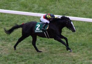 カンニング竹山の愛馬「ブラックスピネル」がマイラーズC(G2)へ参戦!重賞連勝のカギは「エアスピネル」×「武豊」コンビとの位置関係にアリ!?の画像1