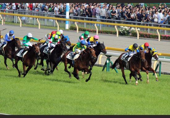 「ディープインパクト産駒・爆発」の2016牡馬クラシック。3頭の「筆頭後継種牡馬候補」が彩った結末は「衝撃」と驚嘆