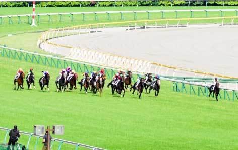 【サウジアラビアRC(G3)展望】ロードカナロア産ステルヴィオ無敗戴冠なるか......新馬「4馬身圧勝」ダノンプレミアムも登場