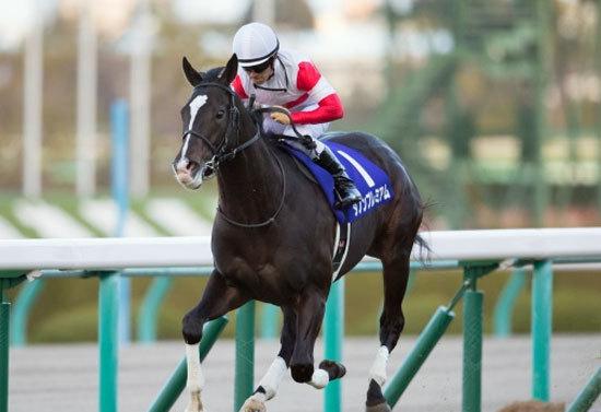 弥生賞(G2)ダノンプレミアムに「三冠馬ナリタブライアン」級の期待。異次元の強さを誇る2歳王者にとって今回が「皐月賞よりも危険」な理由