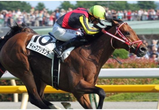 新種牡馬争いでまず飛び出した日本ダービー馬ディープブリランテ!英雄2世の愛娘が「大舞台」への出走権ゲット!