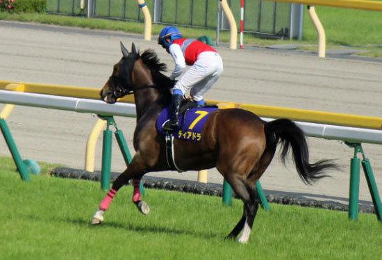 【府中牝馬S(G2)展望】JRA「スーパー牝馬G2」! 充実ディアドラにデムーロリスグラシューが襲いかかるの画像1