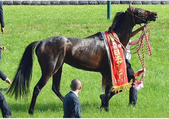 """""""猛者""""凱旋――「ディープインパクト以上」歴史的名馬の復活に、競馬界が揺れる!?"""