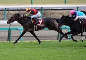 超高額賞金『2016ドバイWCD諸競走』展望――ドゥラメンテら日本馬の世界制覇を阻む最強外国勢