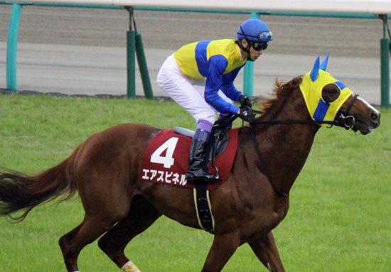 エアスピネルに続け! 新種牡馬「期待の星」にサトノダイヤモンド妹登場のデイリー杯2歳S(G2)