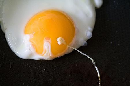 「卵子の老化」キャンペーンよりも、客観的で誠実な性教育をの画像1