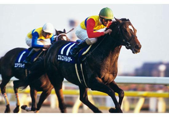 大本命サトノアーサー敗退で問われる「馬場不問」の重要性。「本当に強い馬は馬場を選ばない」という格言を証明した伝説的名馬エルコンドルパサー