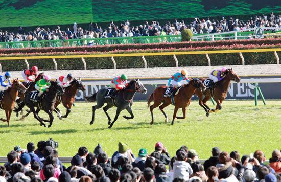 JRAの強行開催に競馬「ストライキ」の可能性......有馬記念後12月28日の競馬開催に「断固反対」なのはファンだけではなかった?の画像1
